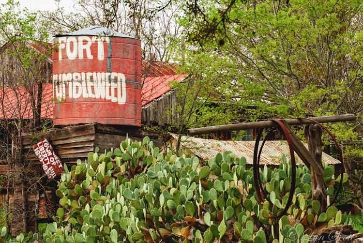 Fort-tumbleweed