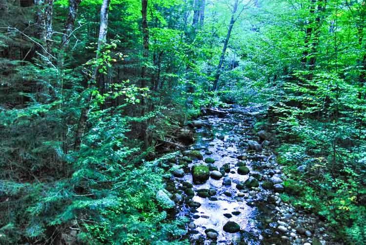 Maine-creek