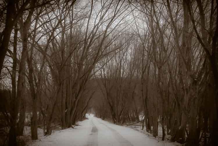 New-England-snowy-road