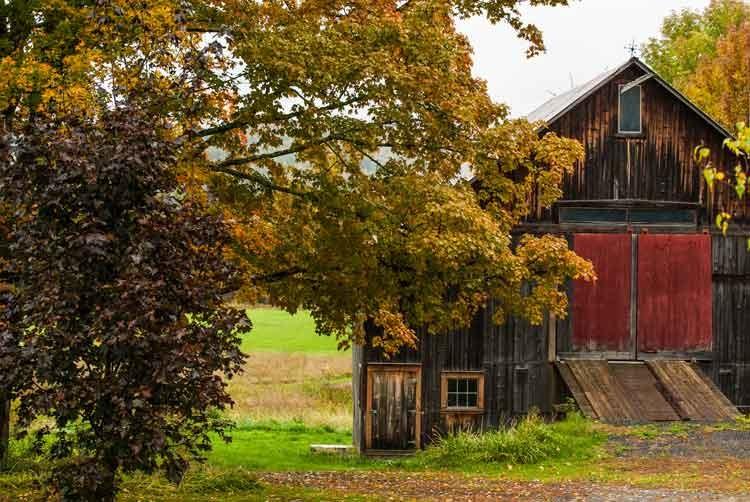 Red-barn-door