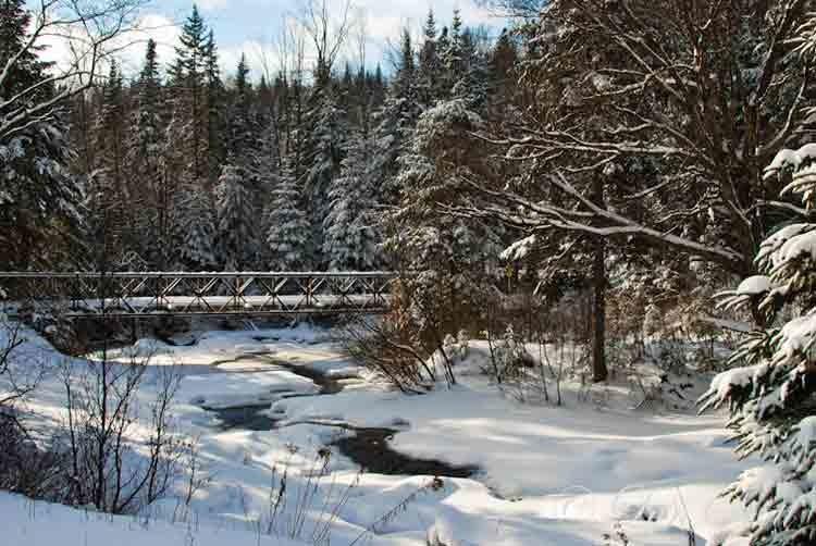 Snowy-bridge-scene2