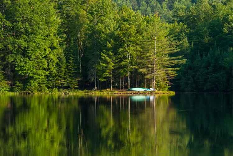 Tranquil-lake