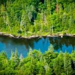 Vermont-pond